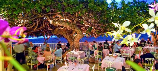 Hau Tree Lanai Sans Souci Royal Kaila Wedding